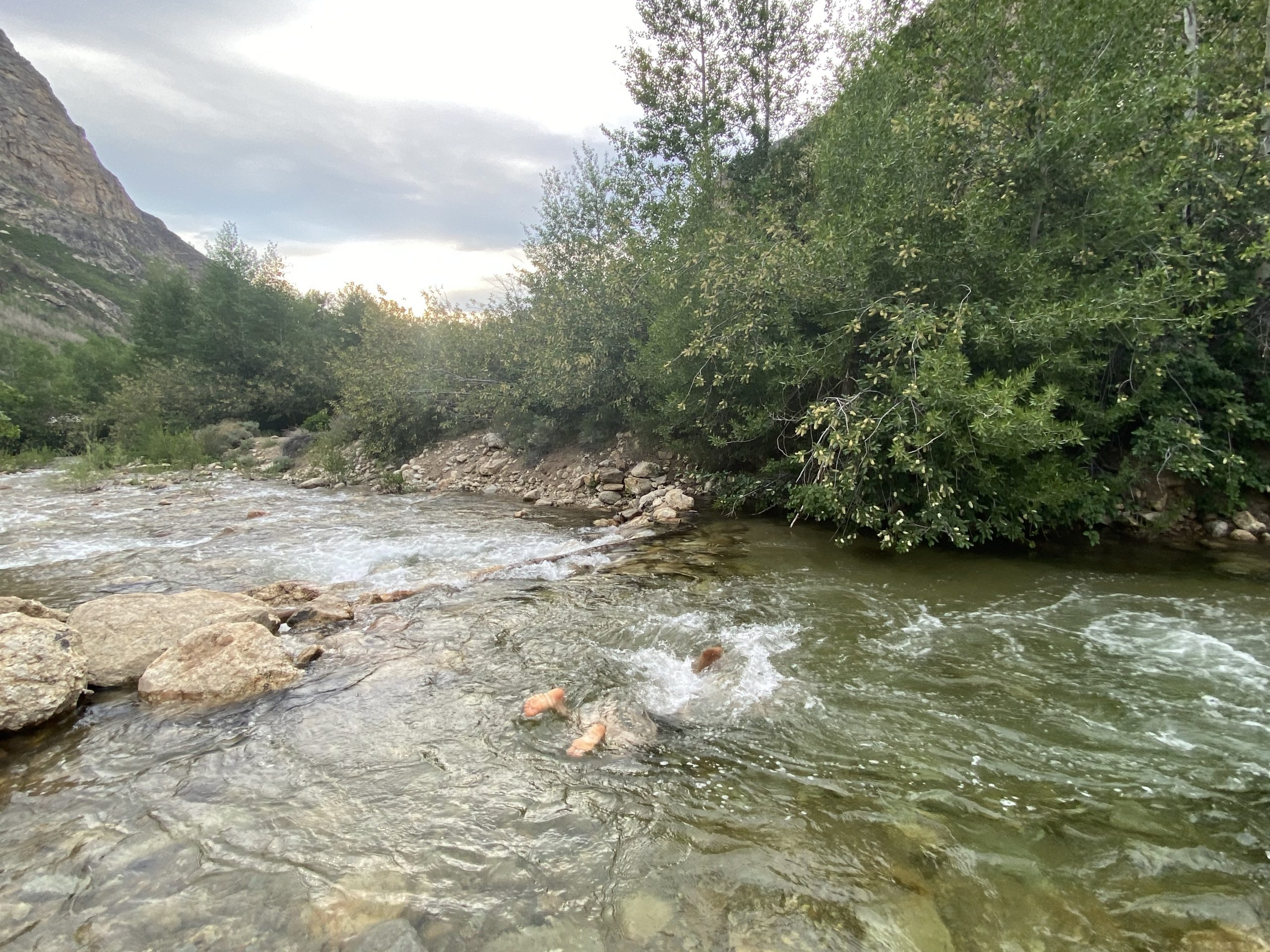 Picture of me splashing face first into a creek